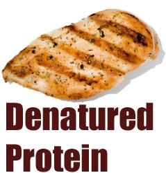 Is Denatured Protein Good For Bodybuilders?