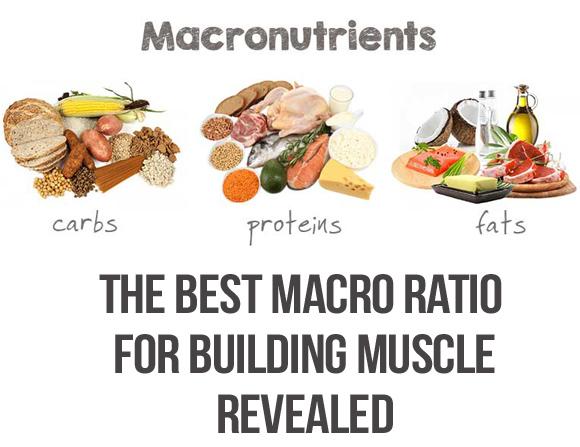 Macros To Lean Bulk / Build Muscle