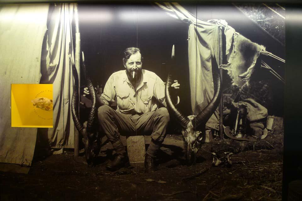 Cazadores para un Museo del siglo XXI