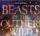 BeastsOfSouthernWildTHUMB