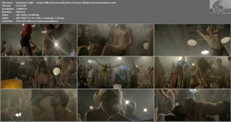 Sebastien Tellier – Cochon Ville (Uncensored) [2012, Nu Disco, HDrip] Music Video