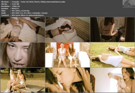 Tensnake – Coma Cat [2010, HDrip] Music Video (Re:Up)