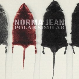 norma-jean-polar-similar-feature