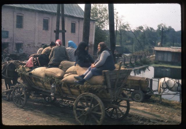 Căruță într-un sat din România, 1971.