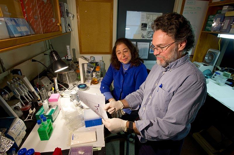 Science and scientists on Martha\u0027s Vineyard Toxicologist Mark Hahn