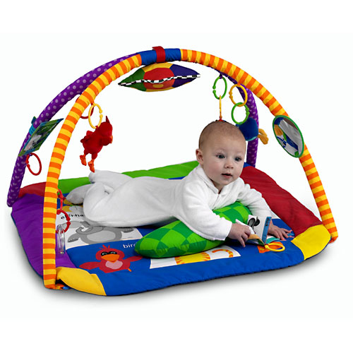 My Family Fun Baby Einstein Discover Play Activity Gym