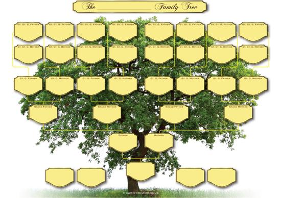 5 generation family tree maker