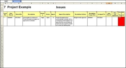 Project Management Report (Issues) \u2013 from wwwMy-Project-Management