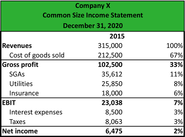 What is a Common Size Income Statement? - Definition Meaning Example - profit and lost statement