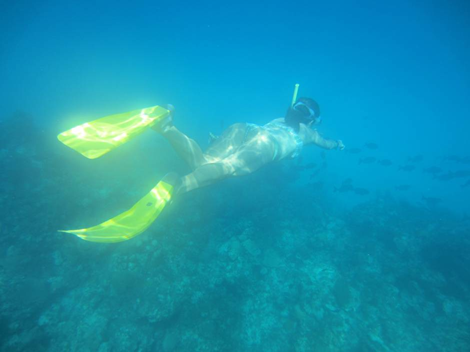 What to do in Cuba? Snorkelling!