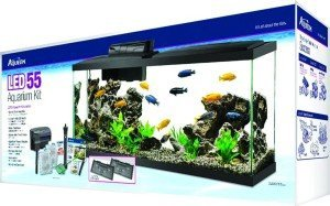 12 Top 55 Gallon Aquariums Kits And Fish Tanks Shortlisted