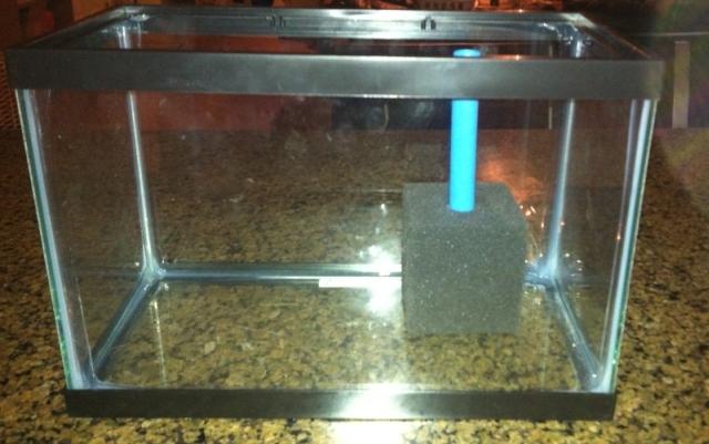 Fish Tank Filter Very Loud Noisy Filters 52532 2017