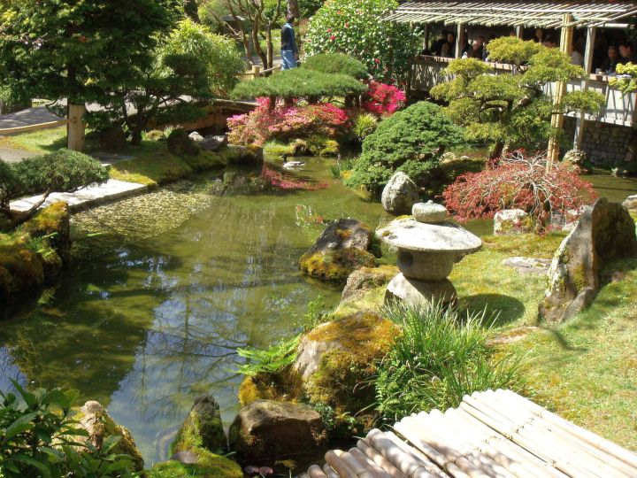 Japanese garden designer with garden lamp and koi pond for Japanese koi pond garden design