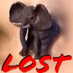 Group logo of Pets: LOST
