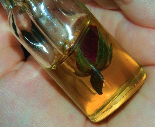 mountain rose facial oil closeup