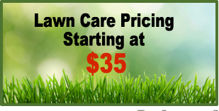 lawn-care-special-coupon