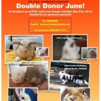 Double Donor June!