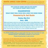 Seminar on Bunny Blood Tests and Xrays May 21