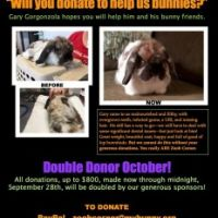 October Double Donor