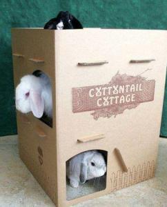 Cottage24