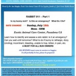 July 12 – Next Rabbit Seminar