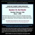 Does My Rabbit Need Braces? First Free Rabbit Health Seminar of 2018.