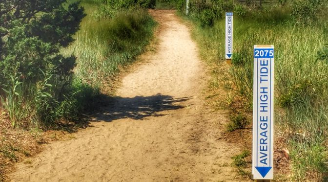New High Tide Markers At The Wellfleet Bay Wildlife Sanctuary On