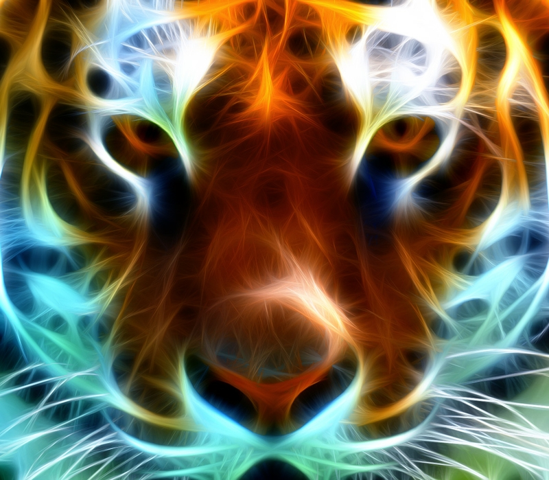 What is my Spirit Animal Guide? - 2nd Story Counseling