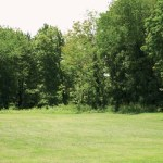 Fawn Meadow, pictured here, is one of four sites where the borough is considering building athletic fields.