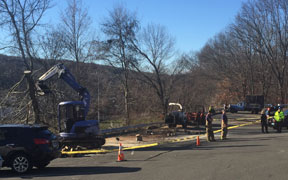 A tree worker was killed in an accident Wednesday in the upper parking lot of Naugatuck High School. –REPUBLICAN-AMERICAN