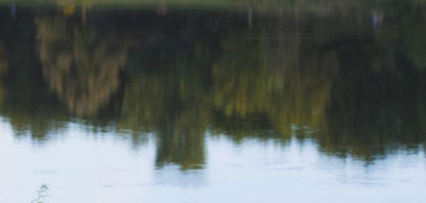 SLIDE_Pond