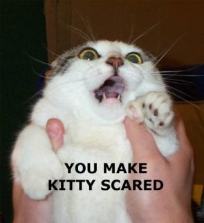 You Make Kitty Scared!