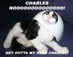 X-Men – Charles, Noooo