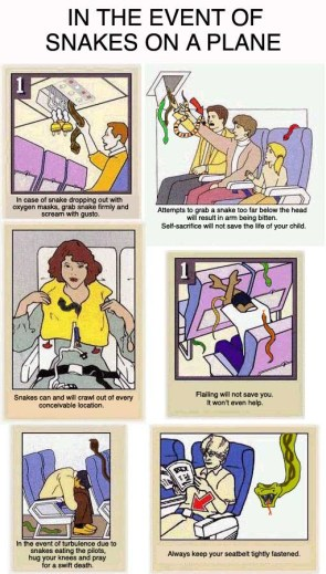 """""""In The Event Of Snakes On A Plane"""" Instruction Manual"""