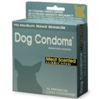 Dog Condoms