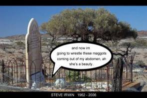 Steve Irwin' s Final Adventure
