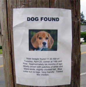 Dog Found: Tasted Like Chicken