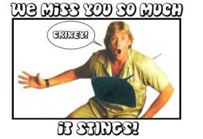 We Miss You So Much Steve Irwin!