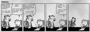 Calvin & Hobbes: The End