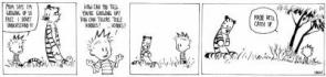 Another FanFic Calvin & Hobbes
