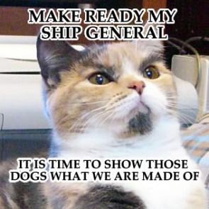 ready-my-ship.jpg