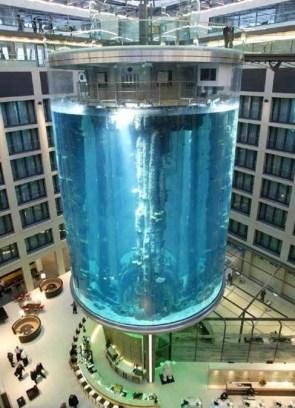 A Rather Large Aquarium