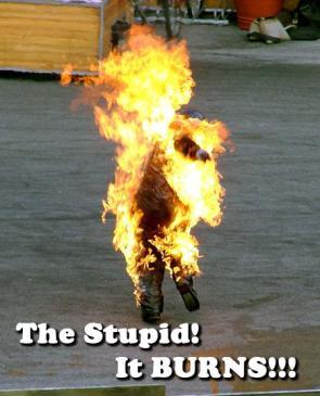 The Stupid…it BURNS.