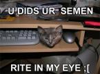 U Did Ur Semen Rite In My Eye :[