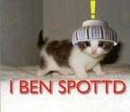 I Ben Spottd