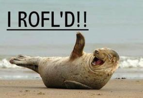 I ROFL'D!!