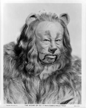 Wizard Of Oz : Cowardly Lion Picture