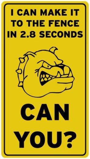 Fast Dog Warning Sign