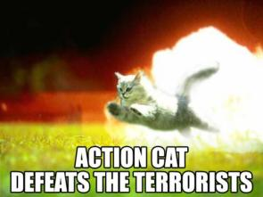 Action Cat Defeats The Terrorists