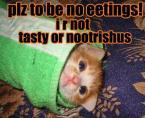 Plz to be no eetings!